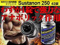 USAサスタノン250-42錠