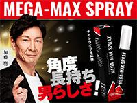 メガマックススプレー(MegaMaxSpray)